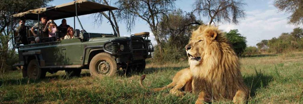 5 Top Places and Things To Do In Africa